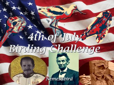 4th of July Birding Challenge!