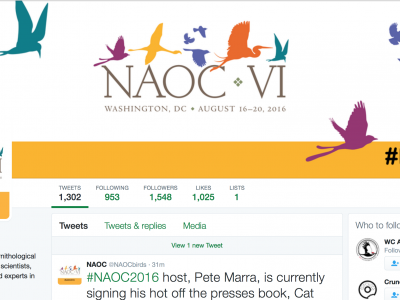 Ten People to Follow at #NAOC2016